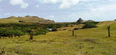 The Lonely Landscape of the Chatham Islands, where the