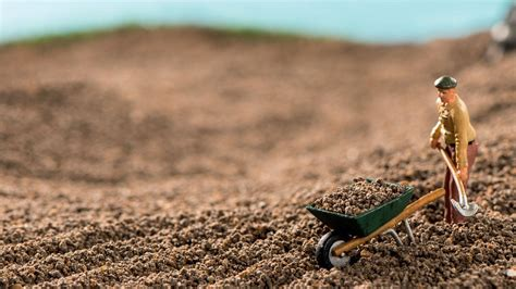 Fertilizer consumption in Russia increased by 20% since