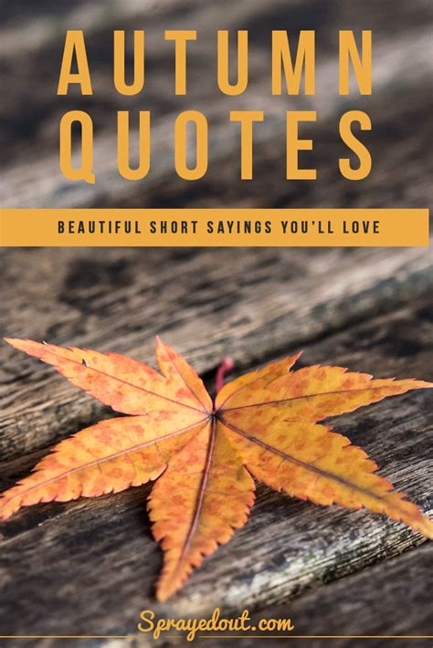 Autumn Quotes & Short Sayings to Make You Fall in Love