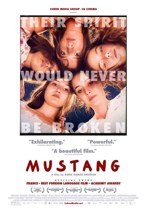 Mustang - Wild About Movies